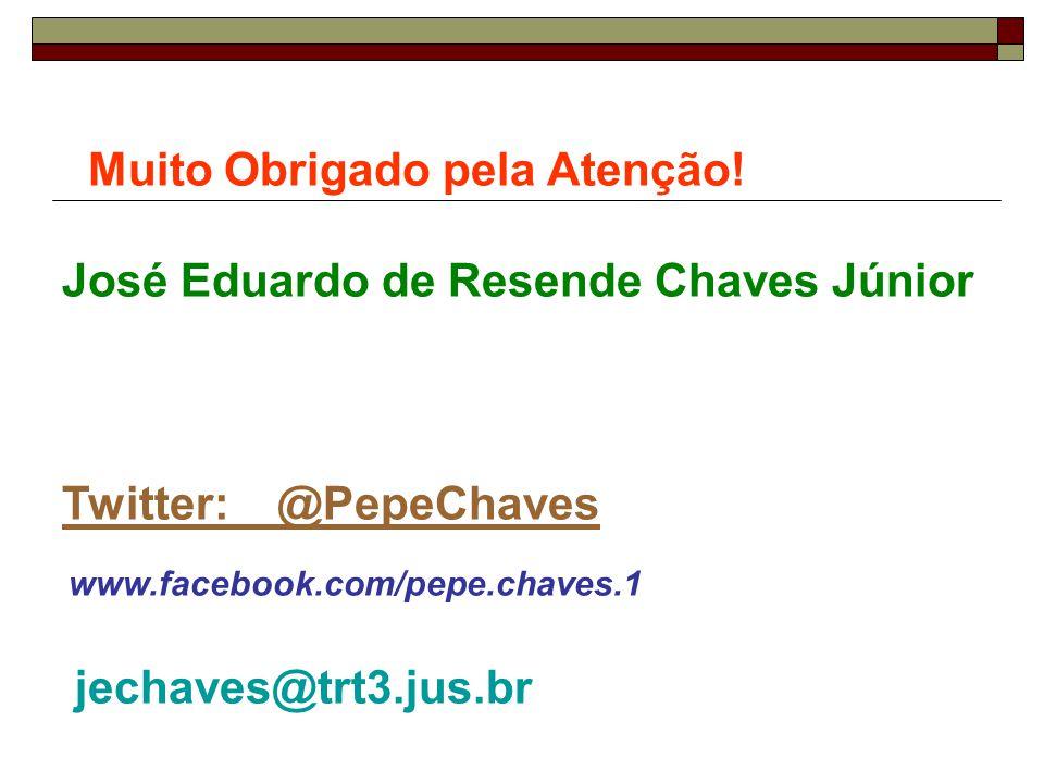 Muito Obrigado pela Atenção! José Eduardo de Resende Chaves Júnior