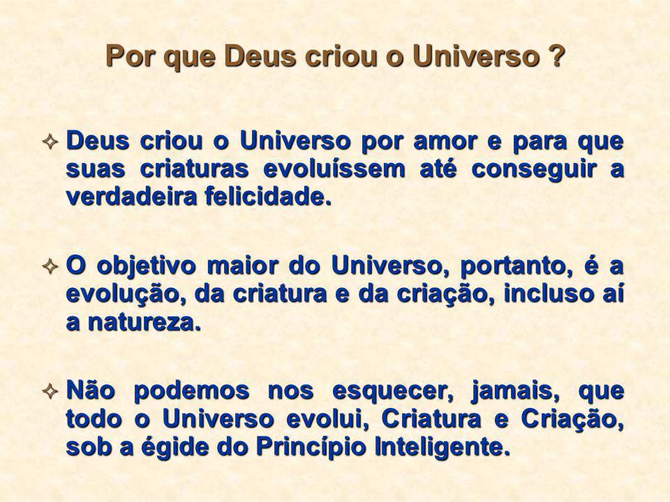 Por que Deus criou o Universo