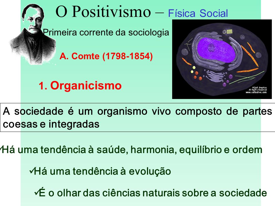 O Positivismo – Física Social