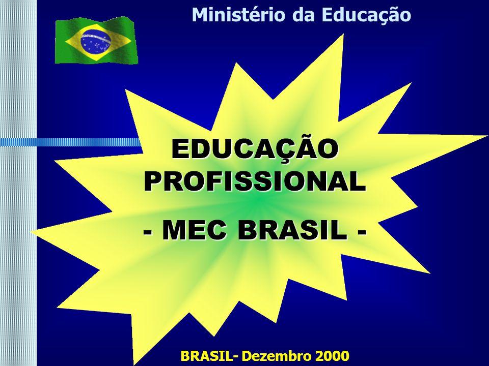 Ministério da Educação EDUCAÇÃO PROFISSIONAL