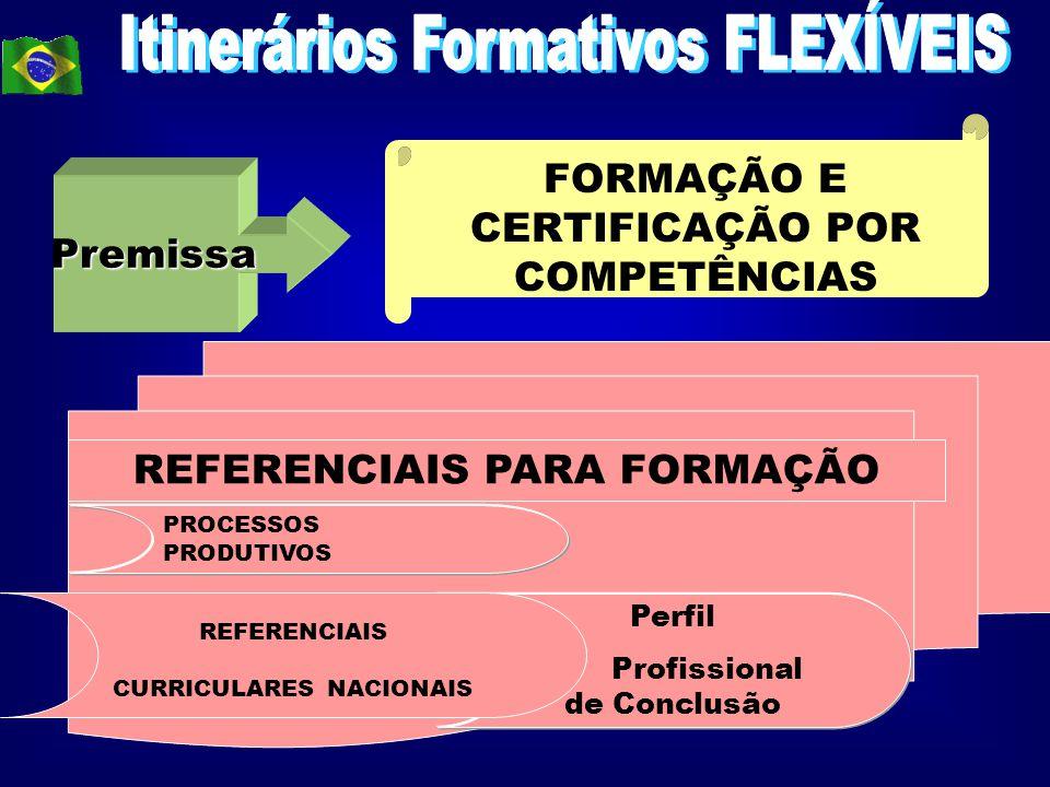 Itinerários Formativos FLEXÍVEIS