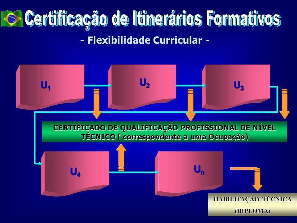 Certificação de Itinerários Formativos - Flexibilidade Curricular -