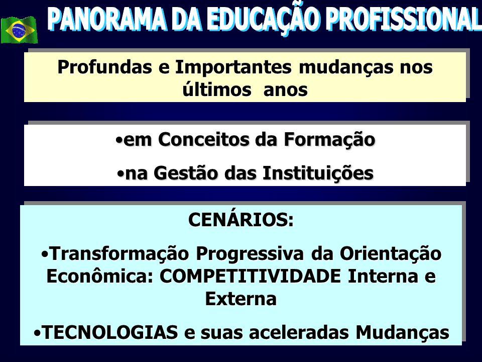 PANORAMA DA EDUCAÇÃO PROFISSIONAL