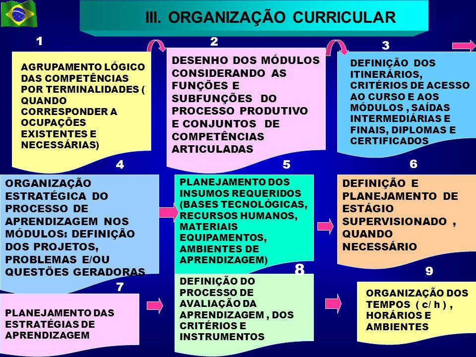 III. ORGANIZAÇÃO CURRICULAR