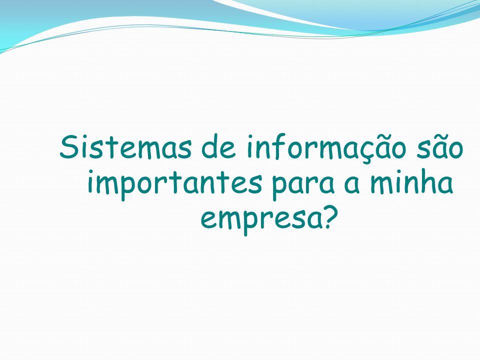 Sistemas de informação são importantes para a minha empresa