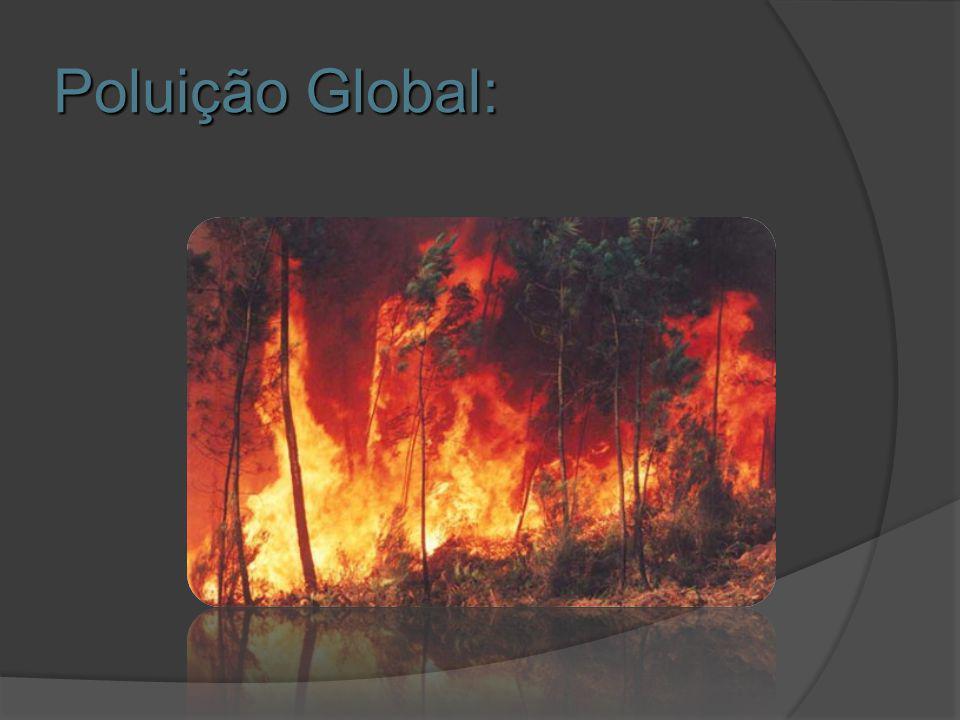 Poluição Global: