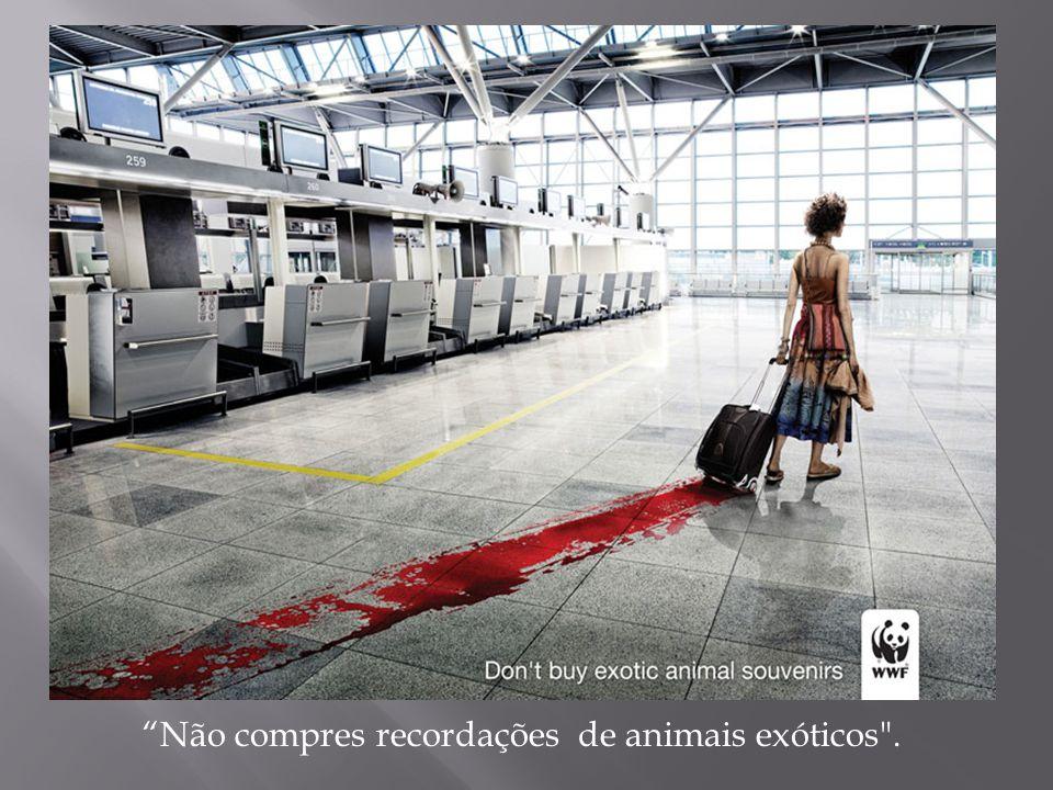 Não compres recordações de animais exóticos .