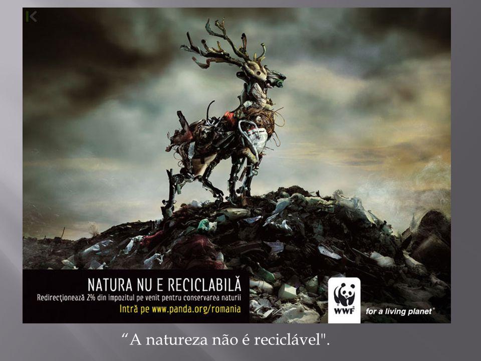 A natureza não é reciclável .