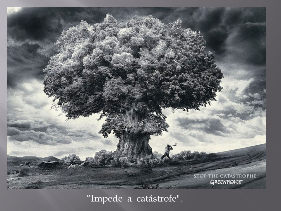 Impede a catástrofe .