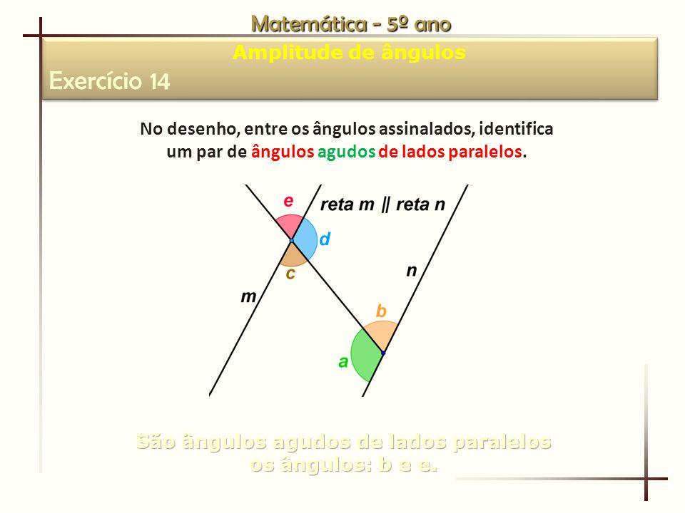 Exercício 14 Matemática - 5º ano Amplitude de ângulos