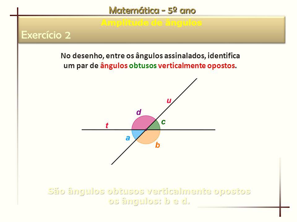 Exercício 2 Matemática - 5º ano Amplitude de ângulos