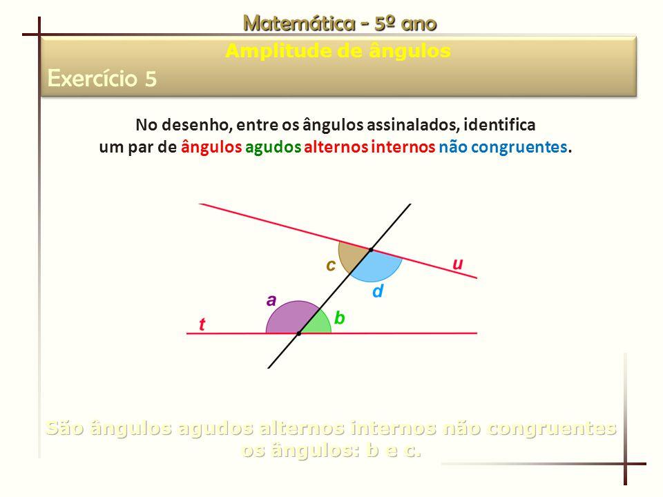 Exercício 5 Matemática - 5º ano Amplitude de ângulos