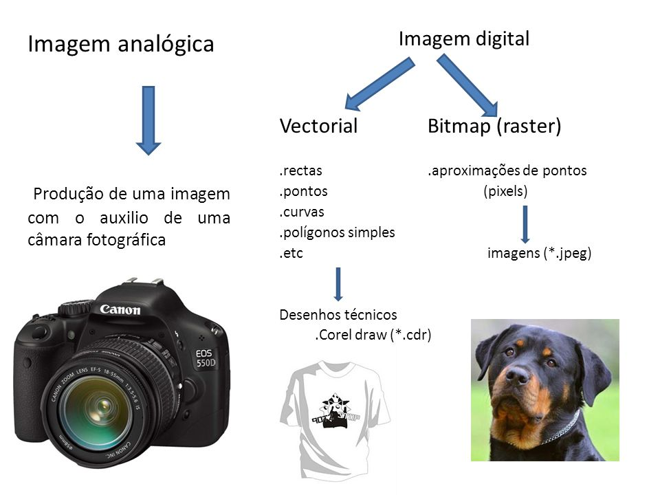Produção de uma imagem com o auxilio de uma câmara fotográfica