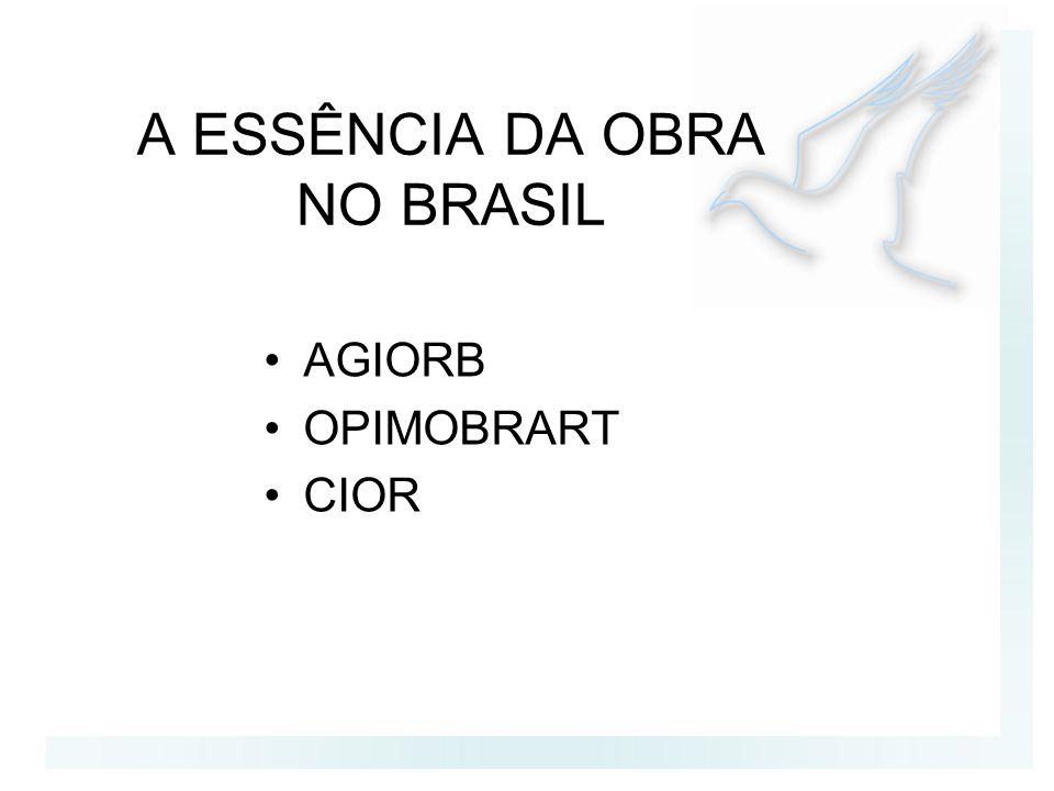 A ESSÊNCIA DA OBRA NO BRASIL