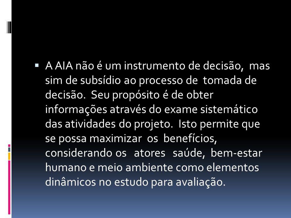 A AIA não é um instrumento de decisão, mas sim de subsídio ao processo de tomada de decisão.