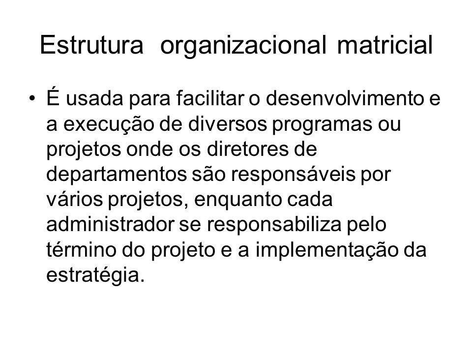 Estrutura organizacional matricial