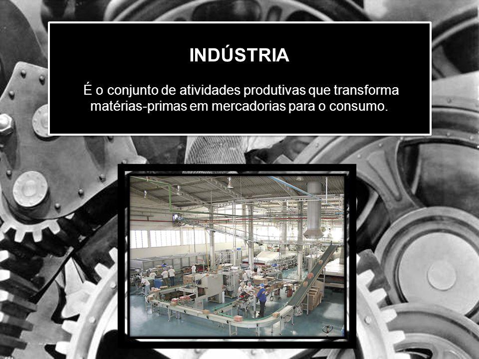 INDÚSTRIA É o conjunto de atividades produtivas que transforma matérias-primas em mercadorias para o consumo.