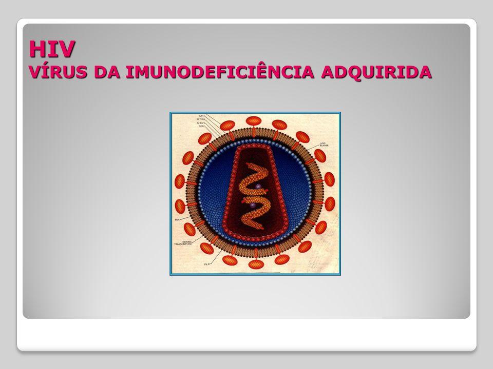 HIV VÍRUS DA IMUNODEFICIÊNCIA ADQUIRIDA