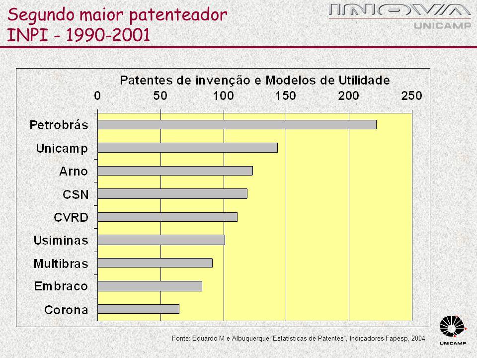 Segundo maior patenteador INPI - 1990-2001