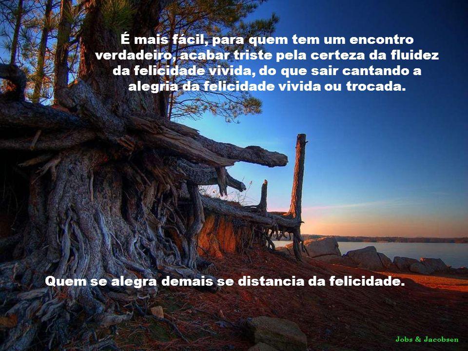 Quem se alegra demais se distancia da felicidade.