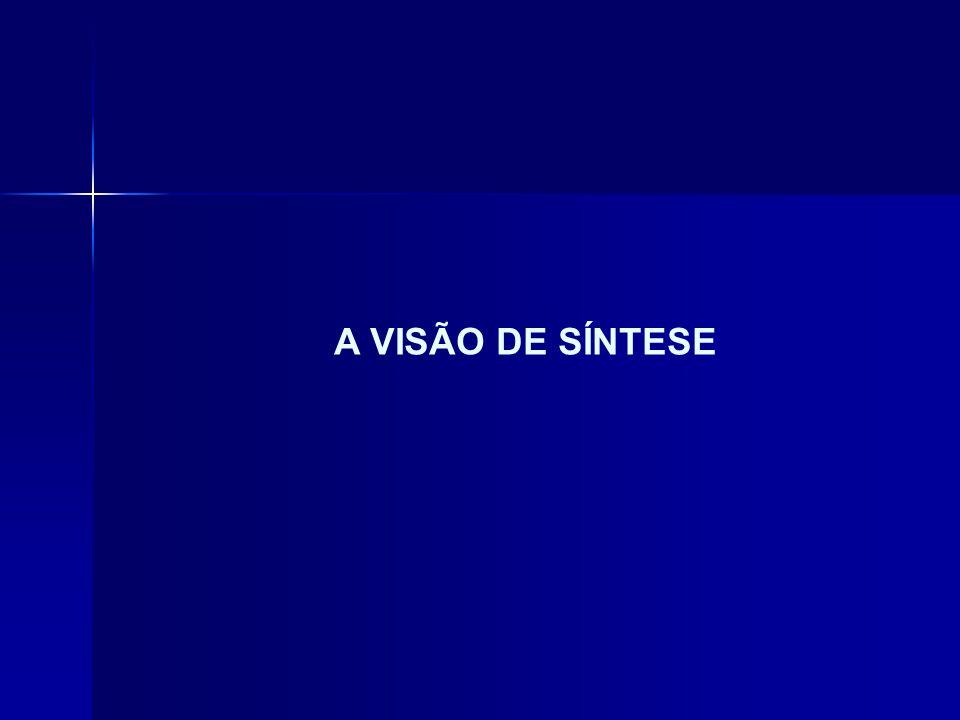 A VISÃO DE SÍNTESE