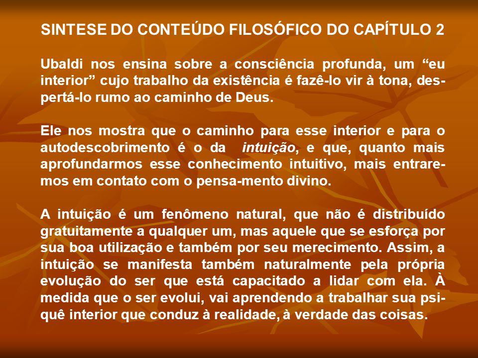 SINTESE DO CONTEÚDO FILOSÓFICO DO CAPÍTULO 2