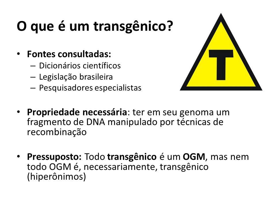 O que é um transgênico Fontes consultadas: