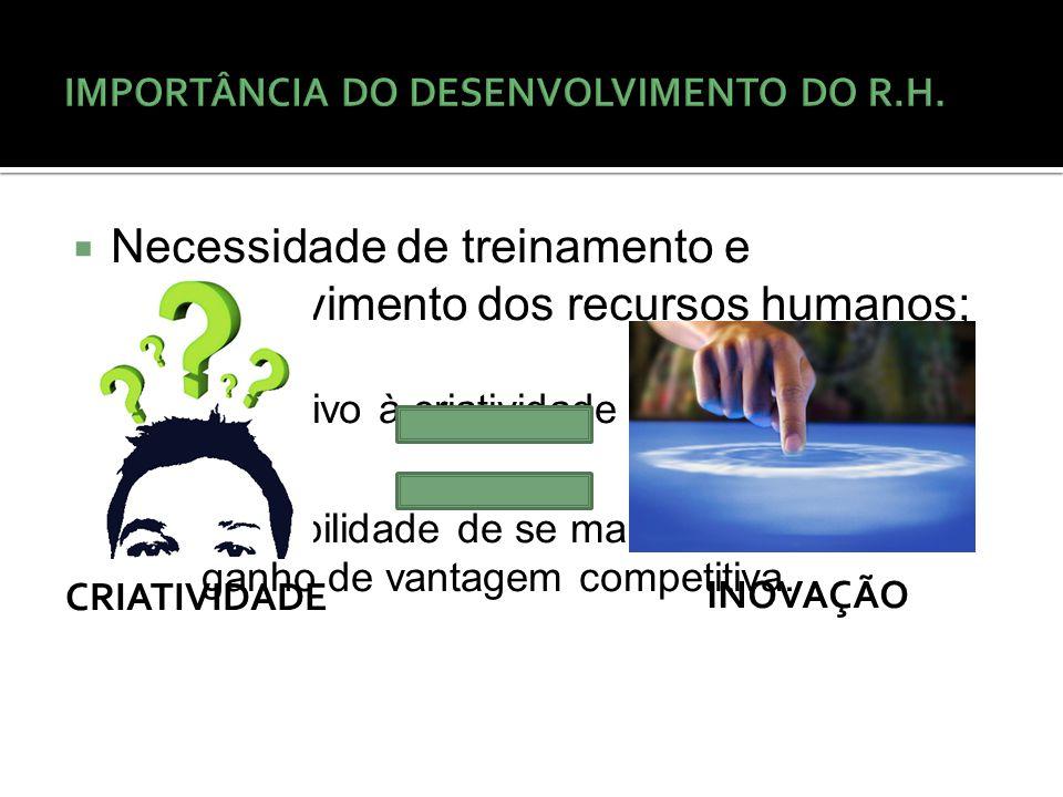 IMPORTÂNCIA DO DESENVOLVIMENTO DO R.H.