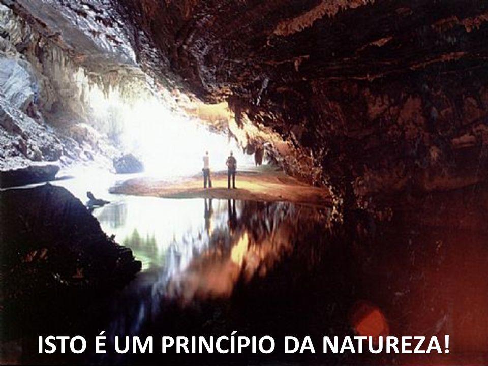 ISTO É UM PRINCÍPIO DA NATUREZA!