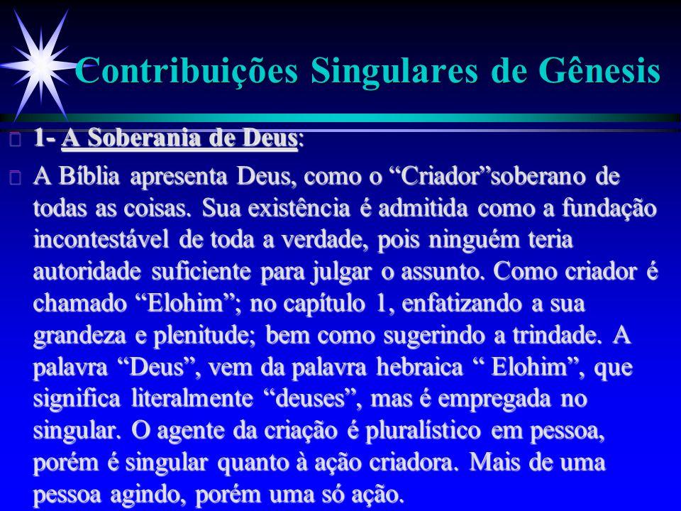 Contribuições Singulares de Gênesis