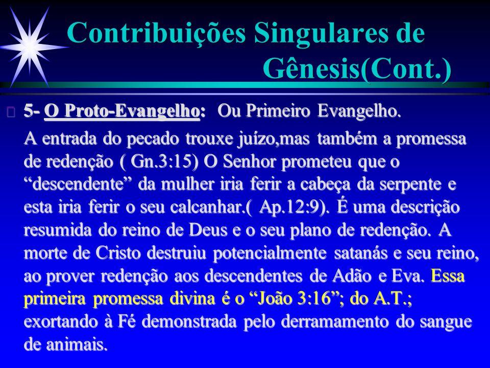 Contribuições Singulares de Gênesis(Cont.)