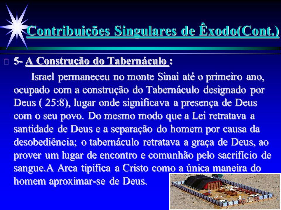 Contribuições Singulares de Êxodo(Cont.)