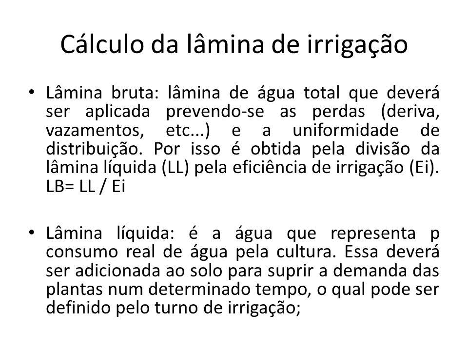 Cálculo da lâmina de irrigação