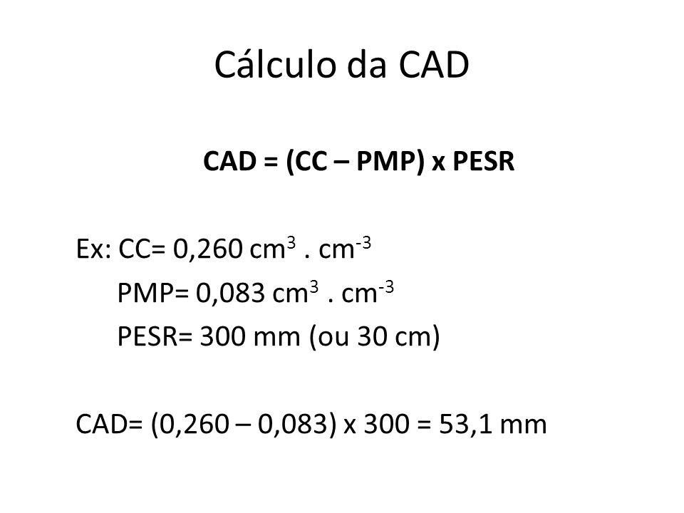 Cálculo da CAD CAD = (CC – PMP) x PESR Ex: CC= 0,260 cm3 .