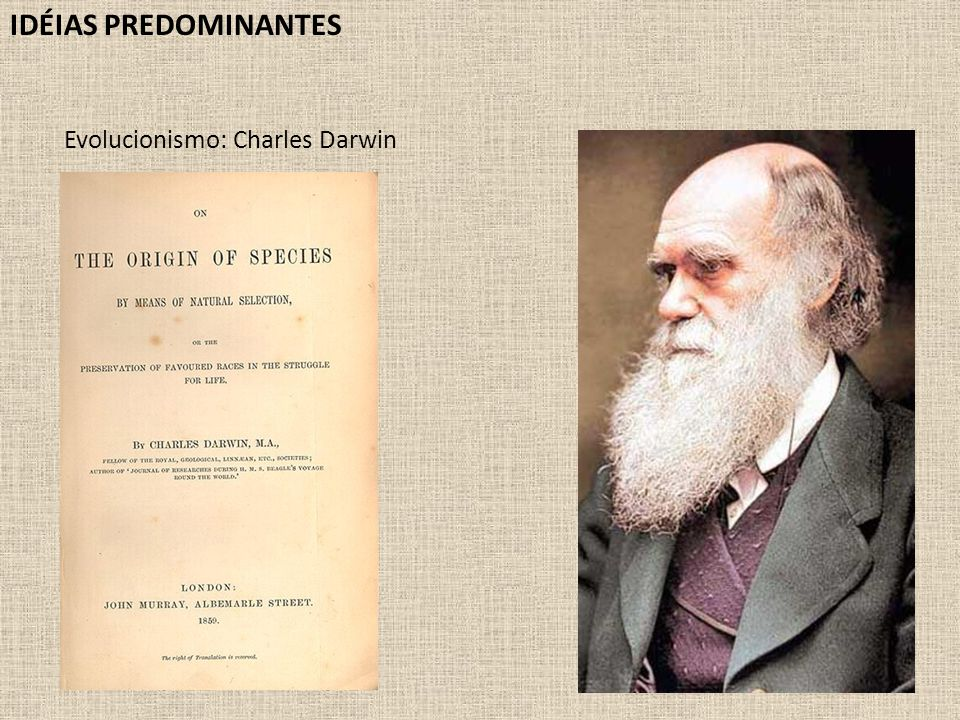 IDÉIAS PREDOMINANTES Evolucionismo: Charles Darwin