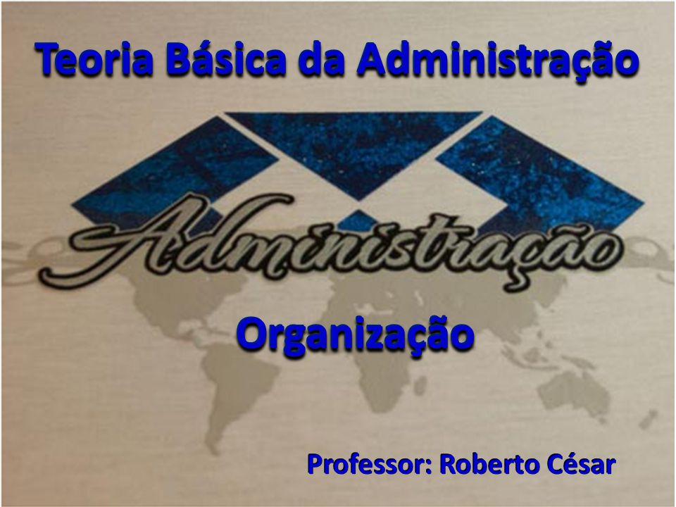 Teoria Básica da Administração Professor: Roberto César