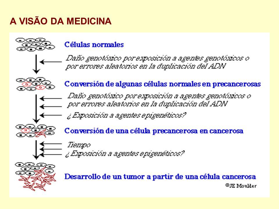 A VISÃO DA MEDICINA