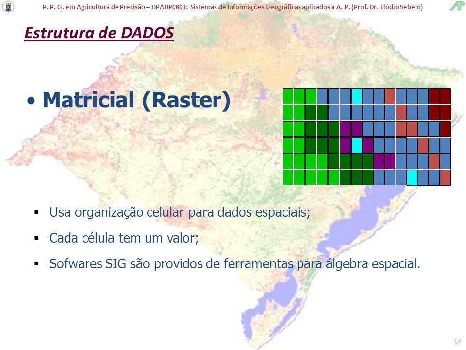 Matricial (Raster) Estrutura de DADOS