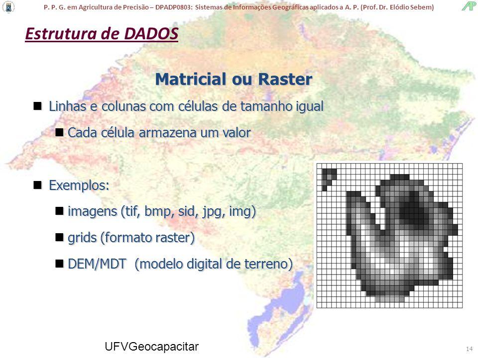 Estrutura de DADOS Matricial ou Raster