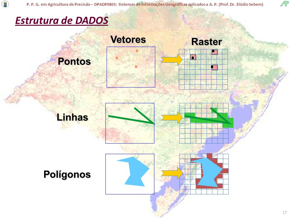 Estrutura de DADOS Vetores Raster Pontos Linhas Polígonos