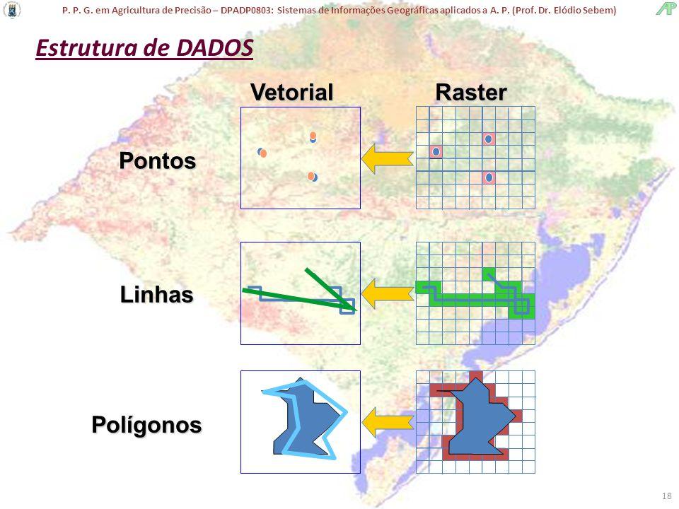 Estrutura de DADOS Vetorial Raster Pontos Linhas Polígonos