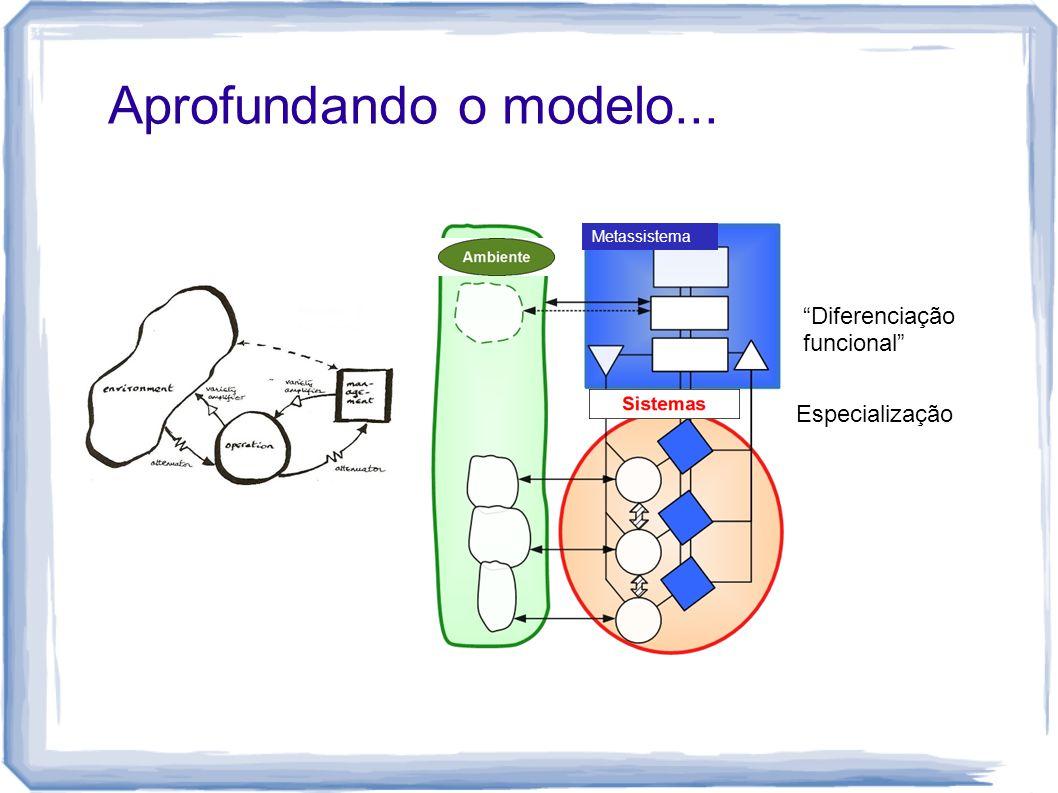 Aprofundando o modelo... Diferenciação funcional Especialização