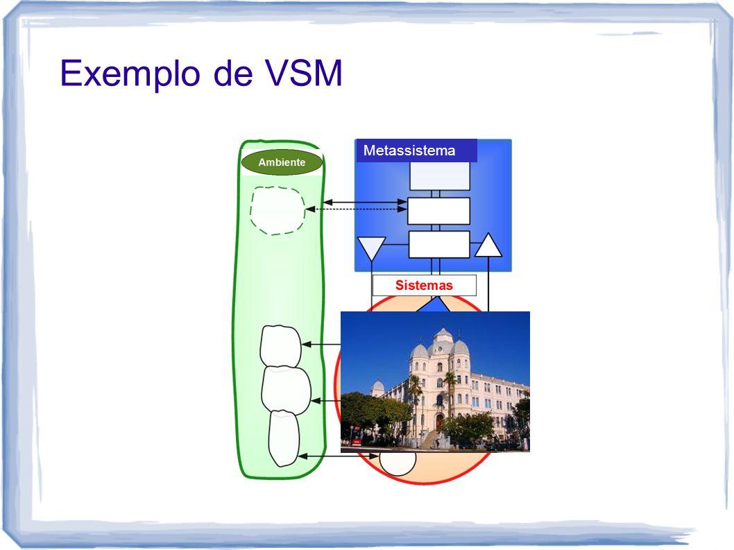 Exemplo de VSM Metassistema