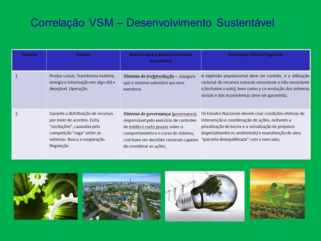 Correlação VSM – Desenvolvimento Sustentável