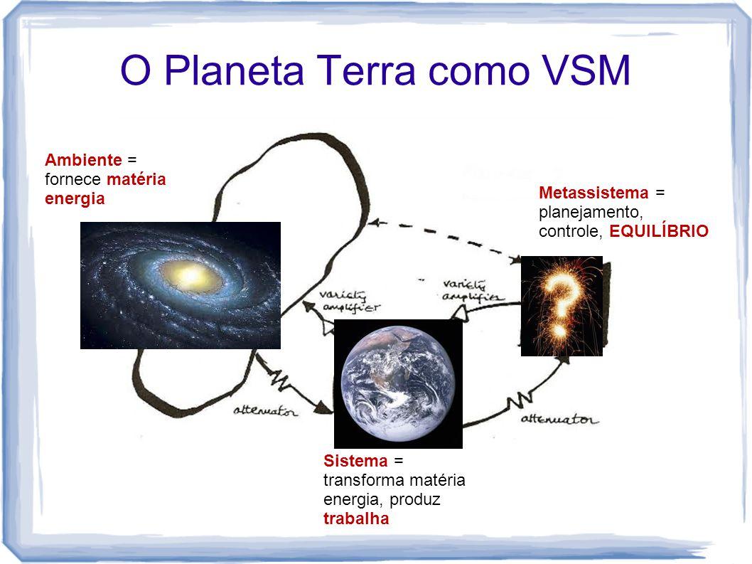 O Planeta Terra como VSM