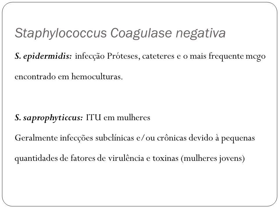 Staphylococcus Coagulase negativa