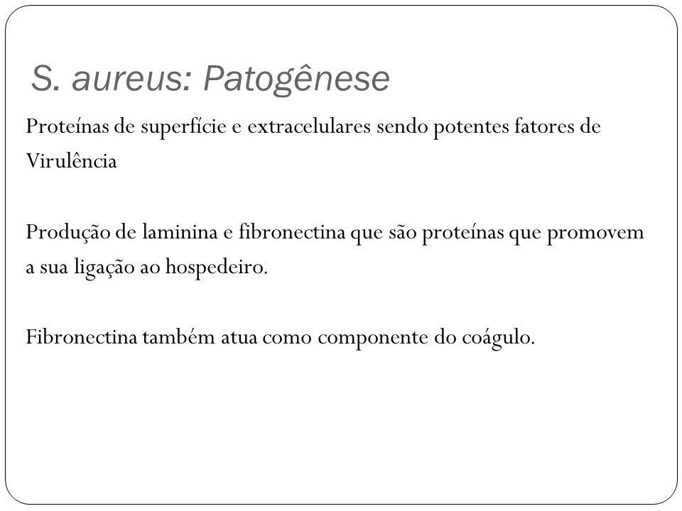 S. aureus: Patogênese