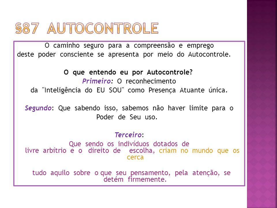 §87 Autocontrole