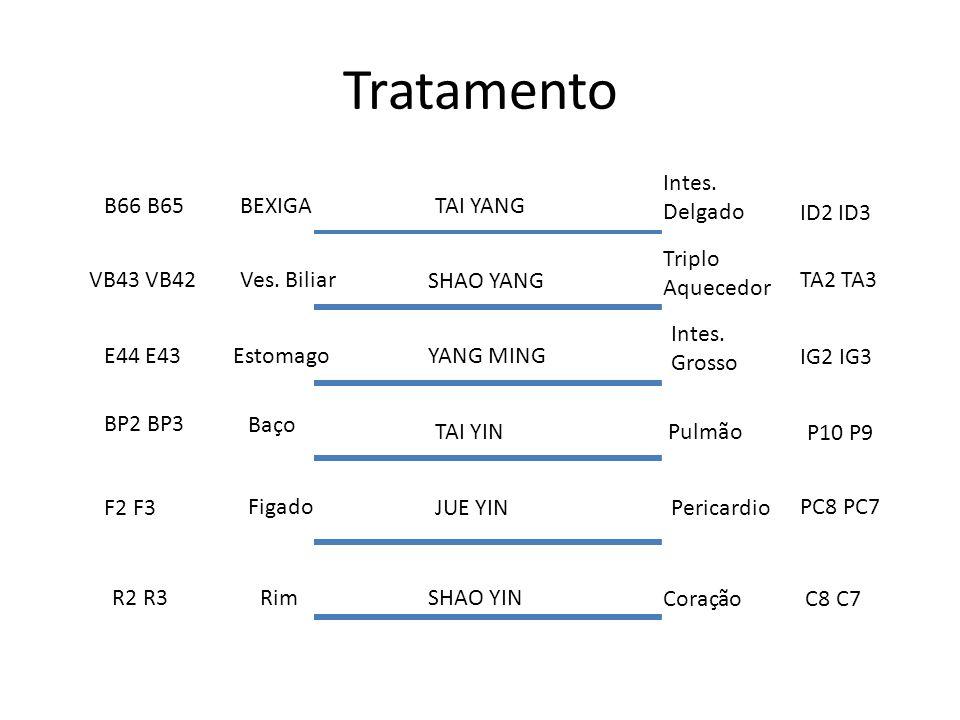 Tratamento Intes. Delgado B66 B65 BEXIGA TAI YANG ID2 ID3