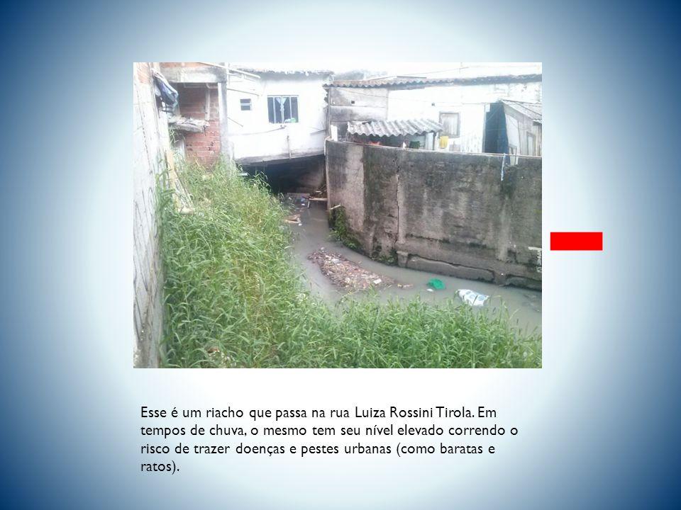 Esse é um riacho que passa na rua Luiza Rossini Tirola